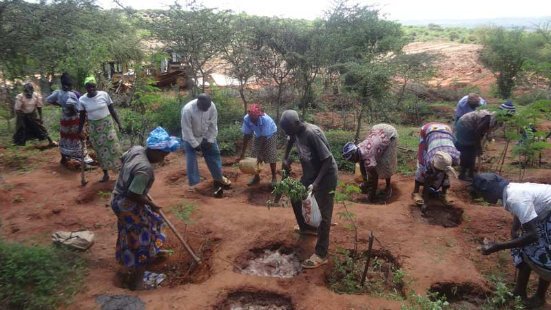 Planting trees in Kitui.