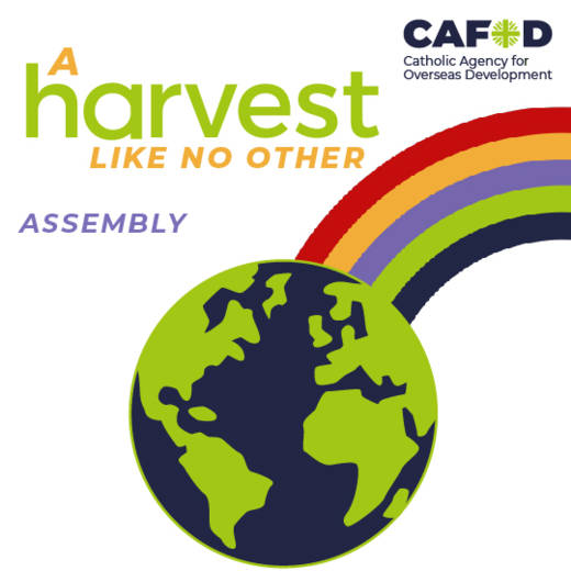 A harvest like no other virtual assembly