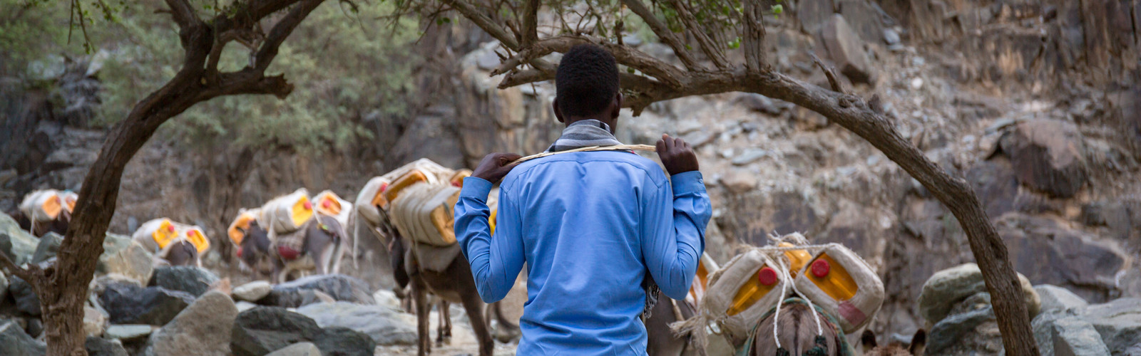 Abdella climbs a mountain to collect water for his family.