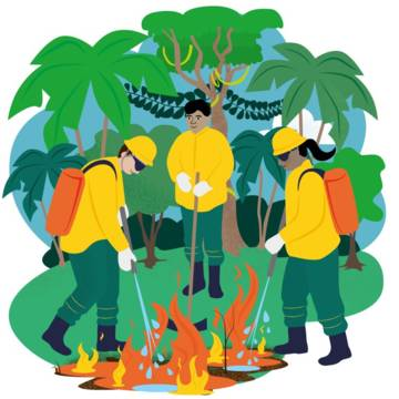 Fight fires in the Amazon illustration