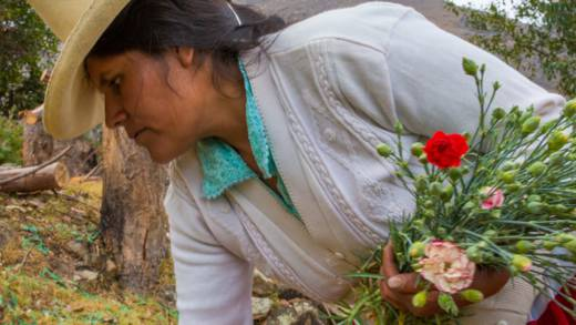 Flore with her carnations in Peru