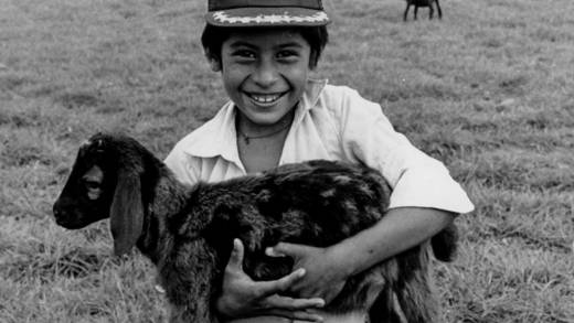 A boy holds his sheep in El Salvador