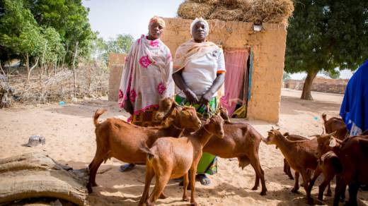 Fatima and Fati in Niger with their gifts of goats. The goats provide milk to help nourish their children and manure to help them grow their crops.