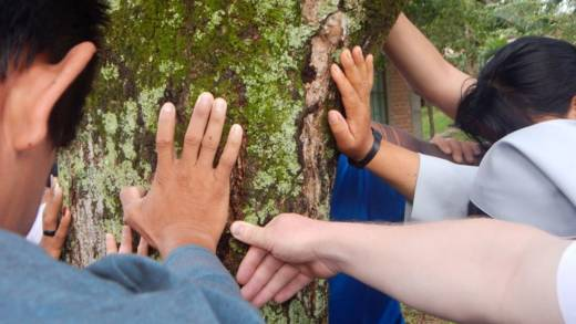 Visitors to the Amazon encircle one of its precious trees.