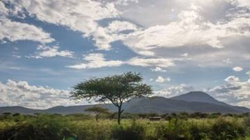 Sun shines over a plain in Isiolo, Kenya.