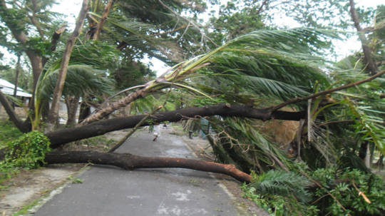 Damage from Tropical Storm Mahasen, which hit Bangladesh in May 2013