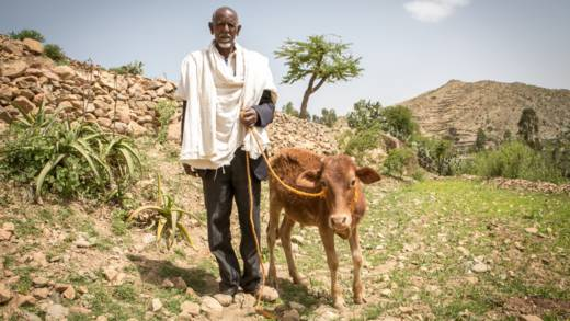 CAFOD is appealing for urgent funds for Ethiopia to respond to the devastating food shortage.