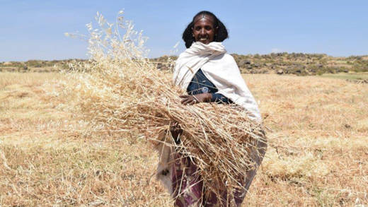 CAFOD help Herit in Ethiopia to gain a good harvest