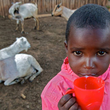 CAFOD partners provided Tabita's family with goats