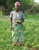 Maria has been involved in activities with our partner Don Bosco / Salesian Fathers in Mozambique to improve her income from farming.