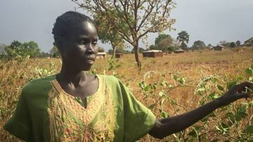 Crop failure South Sudan