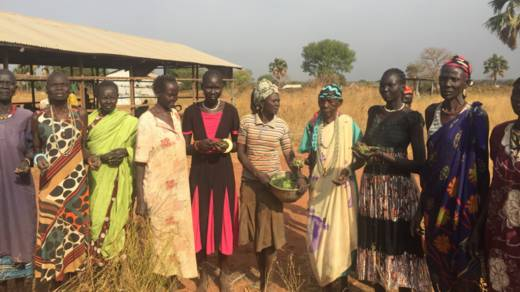 Fighting and severe drought in South Sudan have left millions in need of humanitarian assistance. These women have been picking leaves to feed to their families.