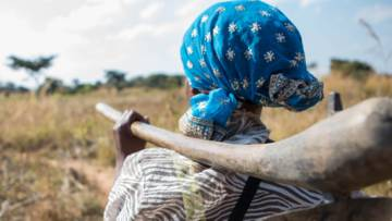 A woman looks across at her farm in Zambia