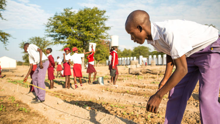 CAFOD want to set up health clubs in schools and fund vegetable gardens