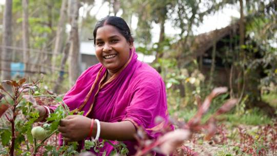 Bandana Shikder tends her vegetable garden