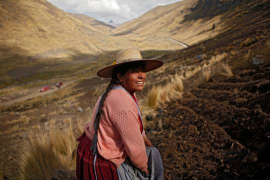 Bolivia farmer in Andes