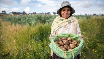 This Harvest CAFOD are supporting farmers like Elizabeth, who lives on the Bolivian Altiplano