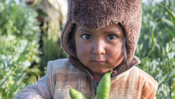 A young boy holds beans on his family farm