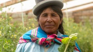 Susana grows crops in her greenhouse in Bolivia.