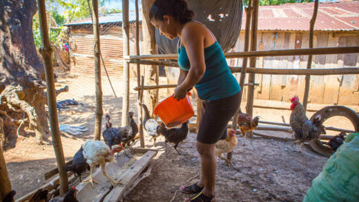 Our partner Solidarity CVX has helped Edelmira to start rearing chickens.
