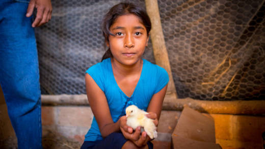 Sophie holds a small chick in her hands. Her parents have been given animals by CAFOD