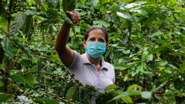 Coronavirus and lockdown measures have pushed farming families in Nicaragua into crisis.