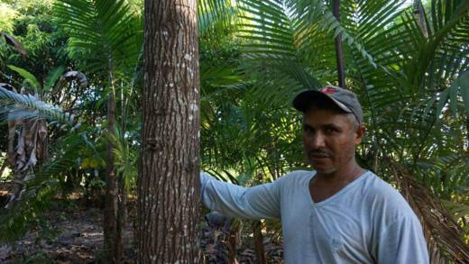 A man standing with his trees on his smallholding