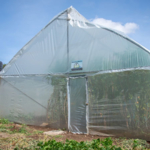 buys a solar powered greenhouse