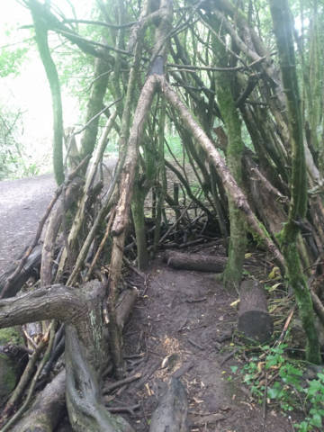 A den made of branches in a wood